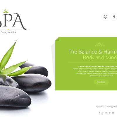 Medical spa business plan template